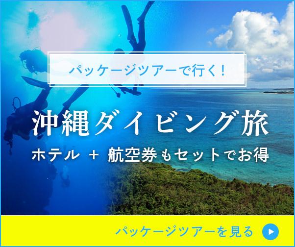 パッケージツアーで行く!沖縄ダイビング旅