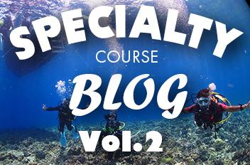SPECIALTY COURSE BLOG Vol.2